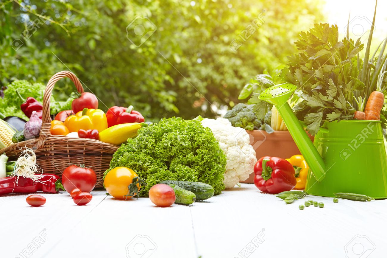 Table backyard vegetable garden - Fresh Organic Vegetables And Fruits On Wood Table In The Garden Stock Photo 41915442
