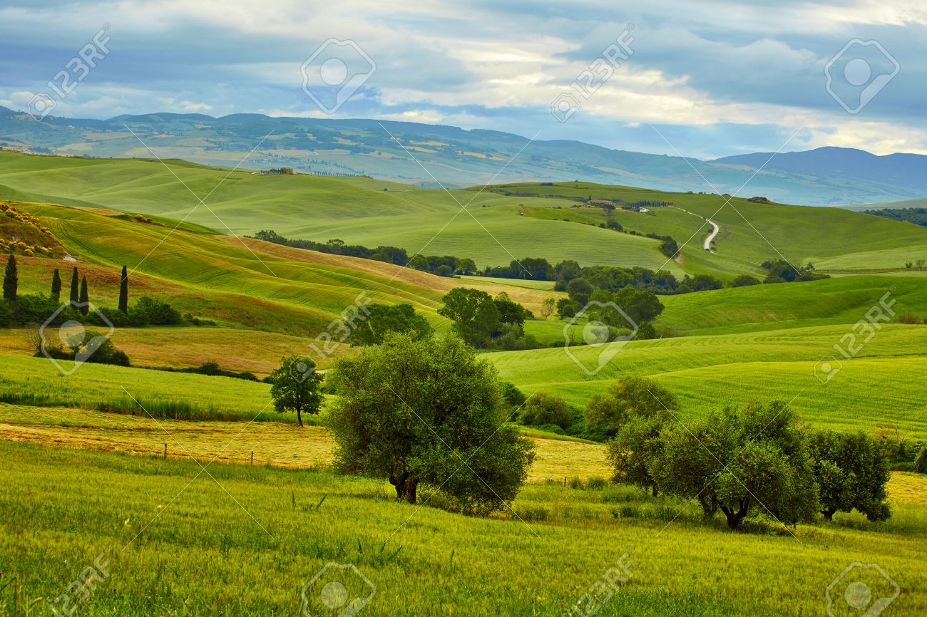 Tuscany, rural sunset landscape. Countryside farm, cypresses trees, green field, sun light and cloud. - 45713431