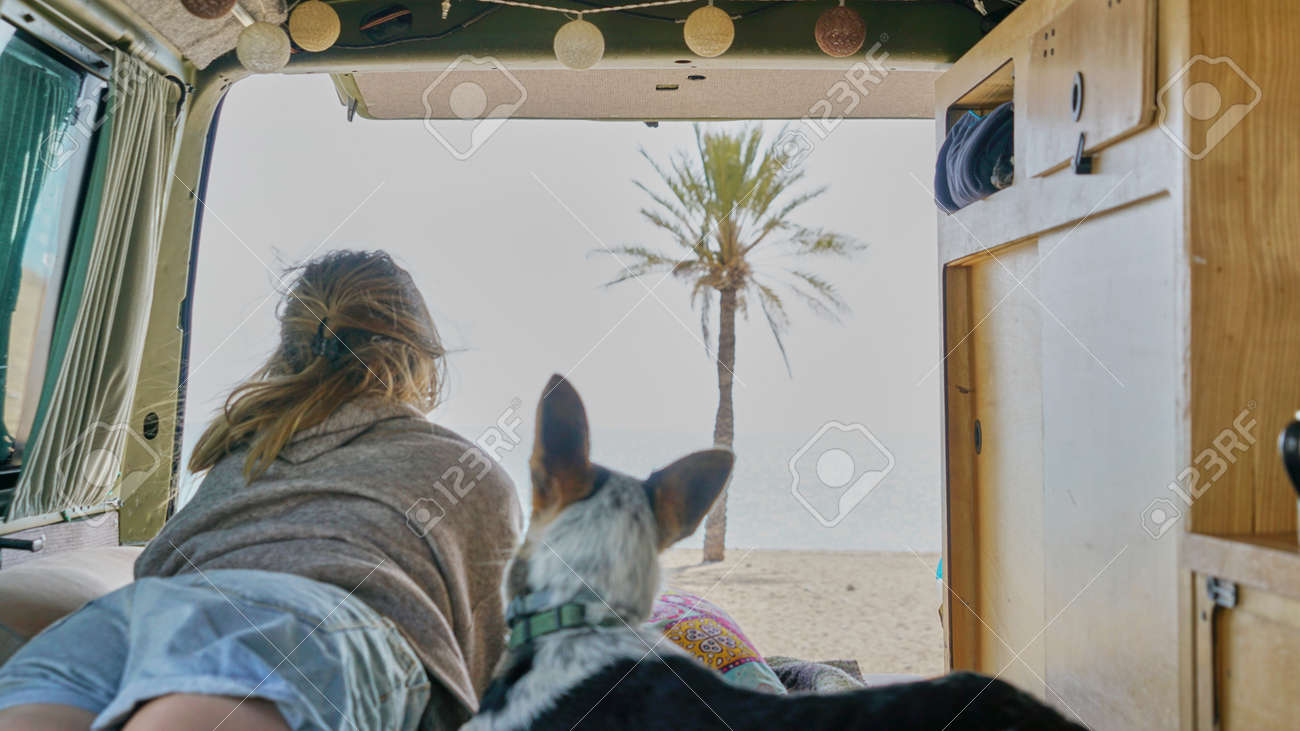girl and her dog on a bed of a self converted camper van looking through the window living van life - 166437939