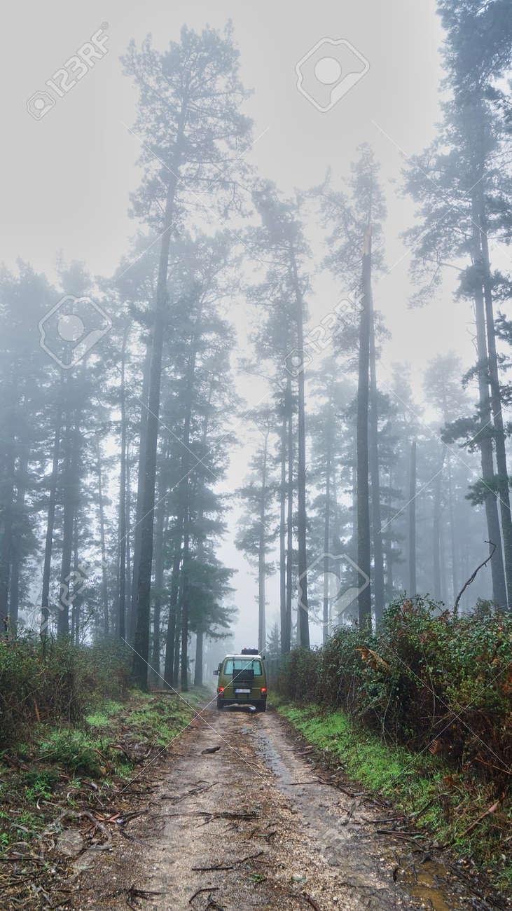 Camper van off road in nature - 166437823