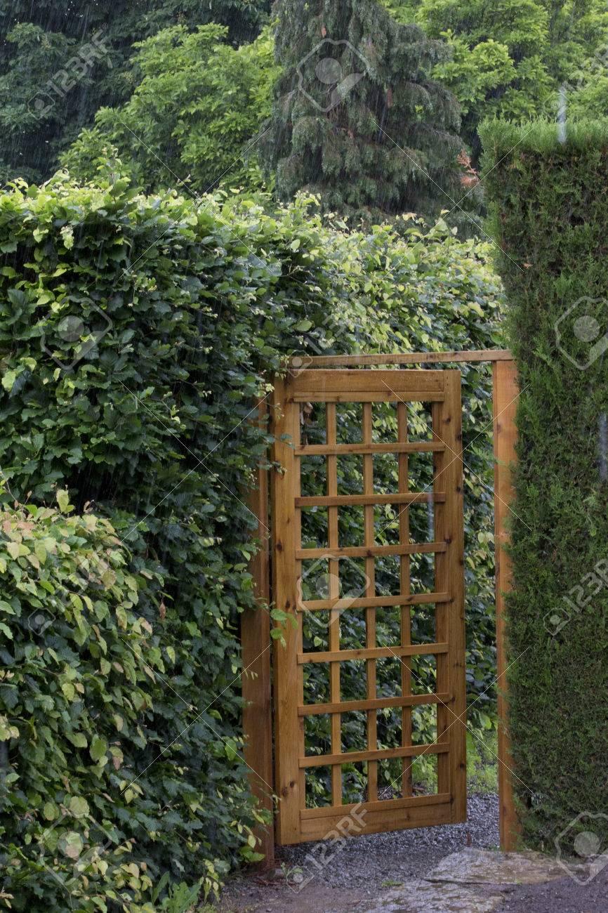 Porte de jardin en bois avec motif de maille fixé parmi les haies