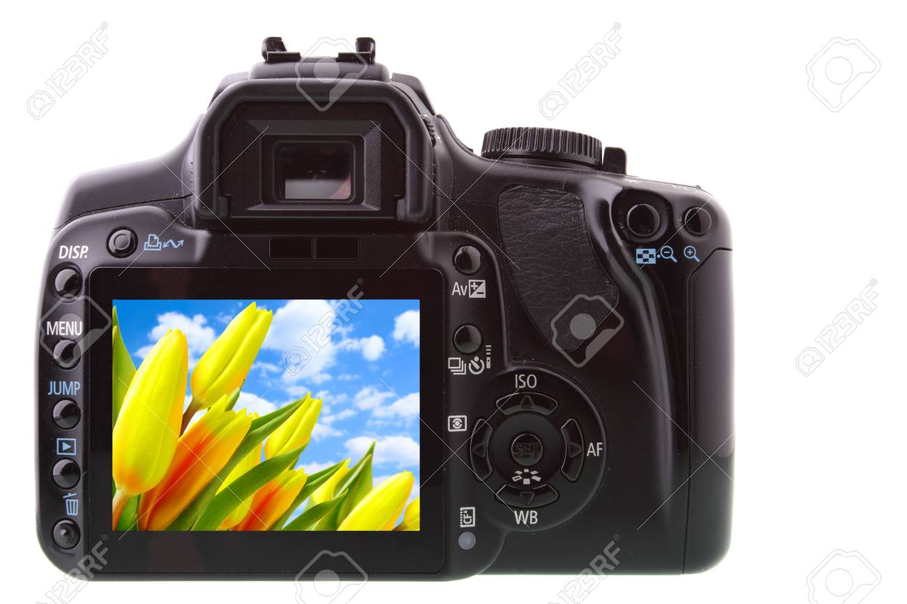 Black DSLR camera from rear isolated over white backgrouhnd Stock Photo - 4702421
