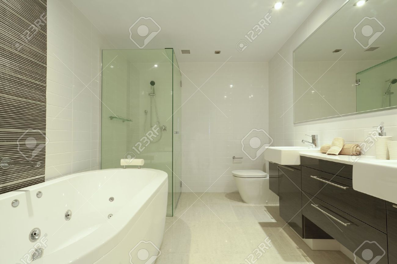 Snygg dubbla badrum med två handfat, spegel, dusch, toalett och ...