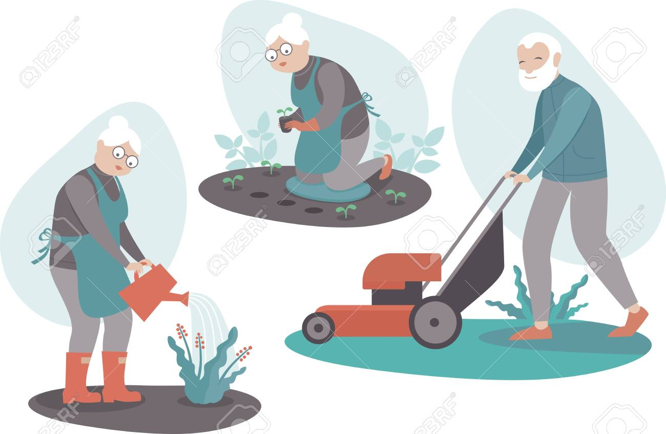 Senior People Gardening Aged Male and Female Characters Planting seedlings, Harvesting, watering flowers, cutting the grass. Active Lifestyle of Retired Men and Women. Cartoon Flat Vector Illustration - 141323490