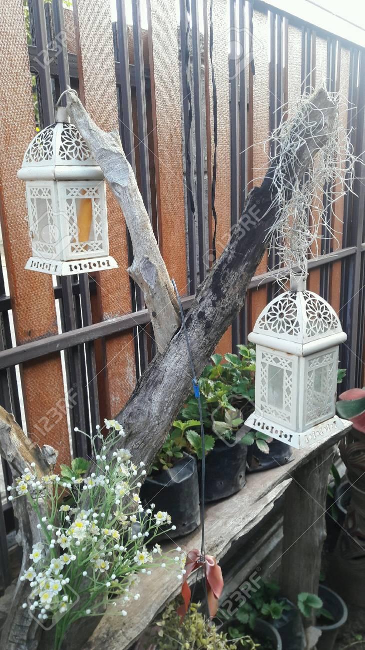 il piccolo giardino di casa. foto royalty free, immagini, immagini ... - Piccolo Giardino In Casa