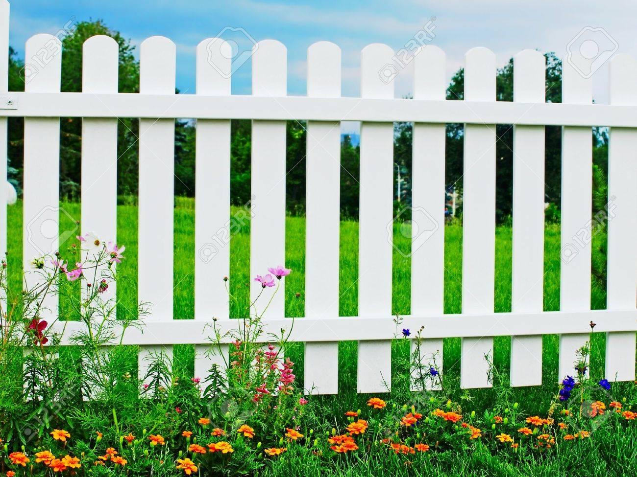 weiß holzzaun auf grünem gras mit blumen lizenzfreie fotos, bilder