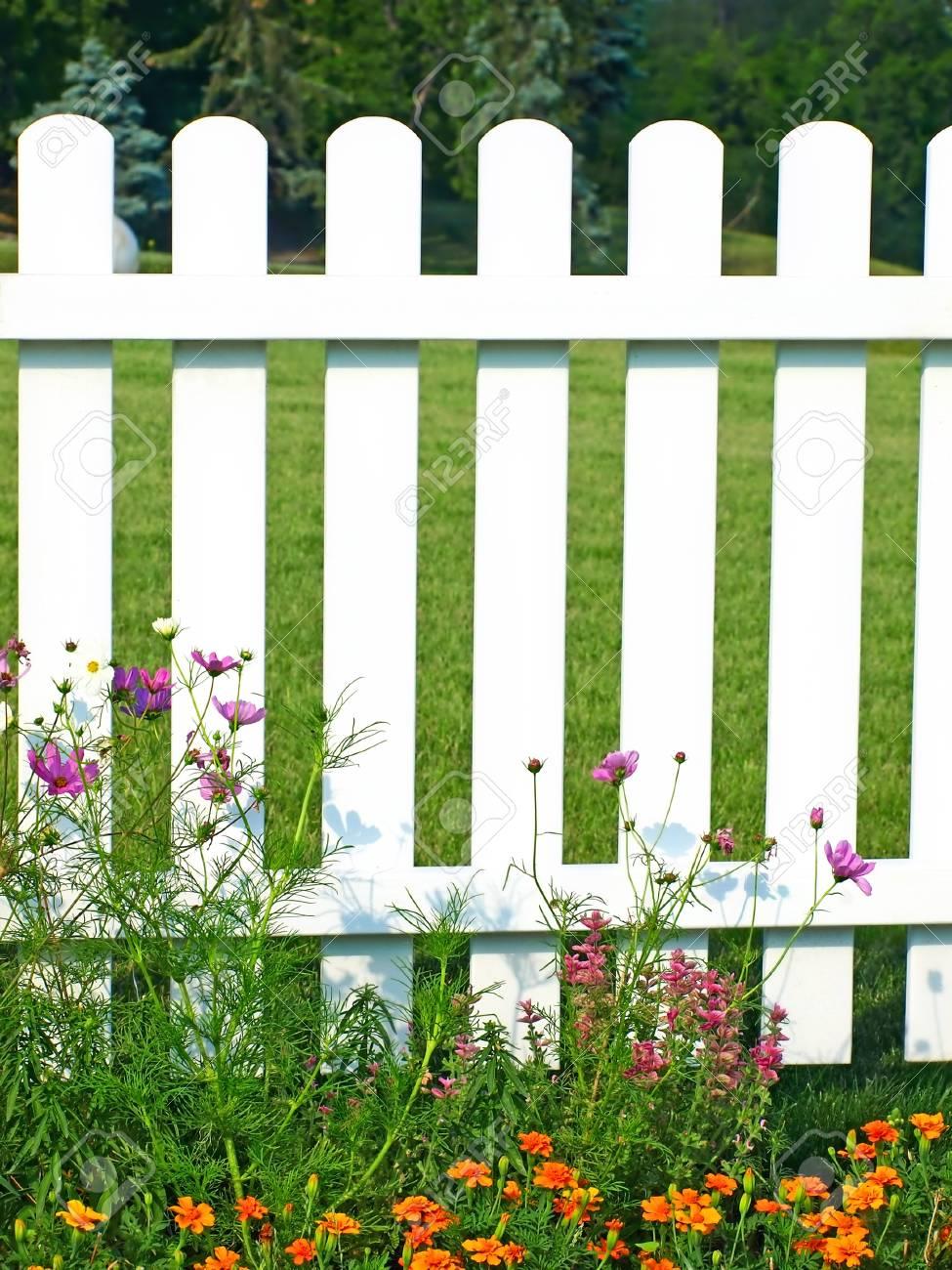 weißer zaun auf grünem gras und blumen auf der großansicht