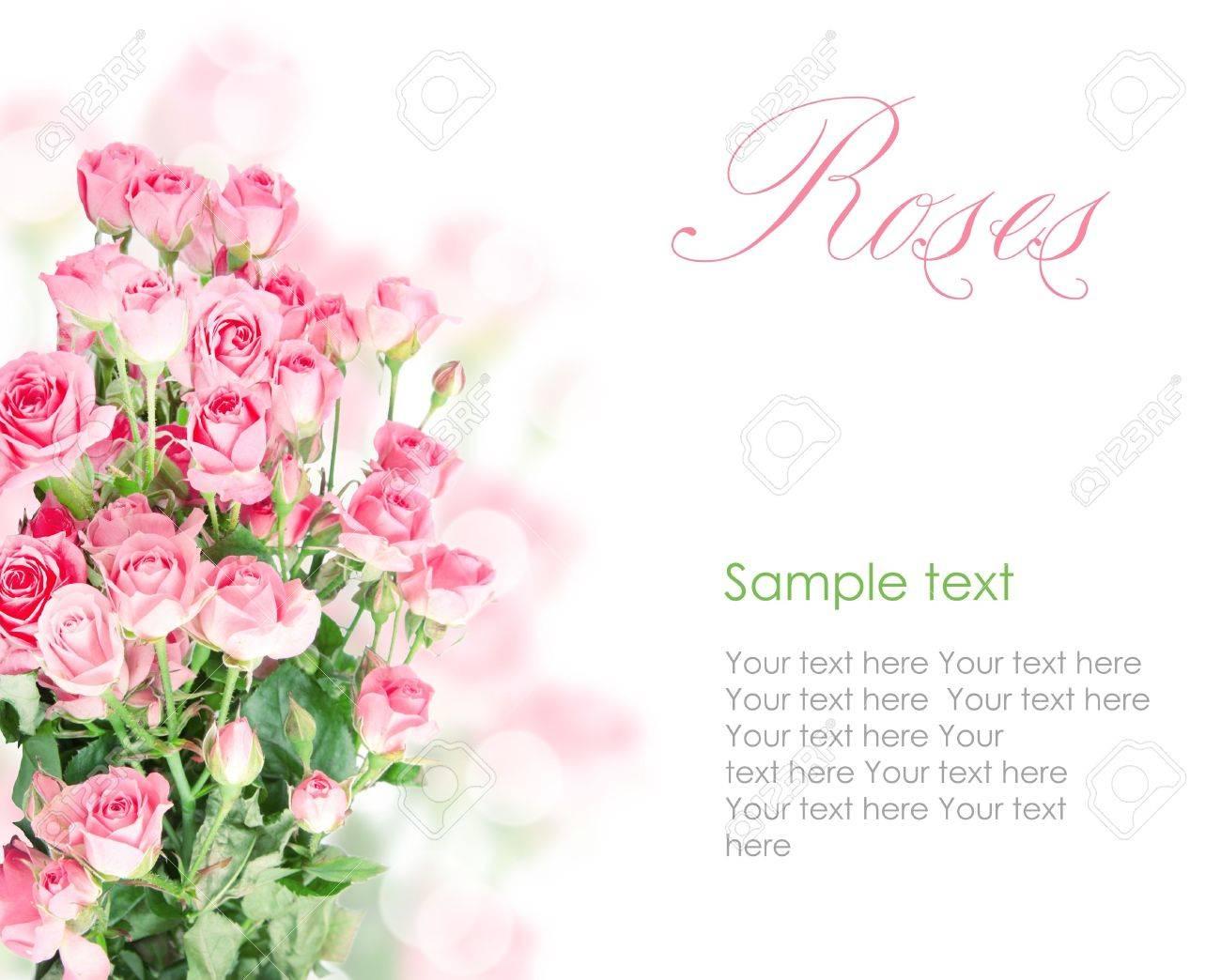 Pink roses postcard design 6(1).jpg Stock Photo - 13057561