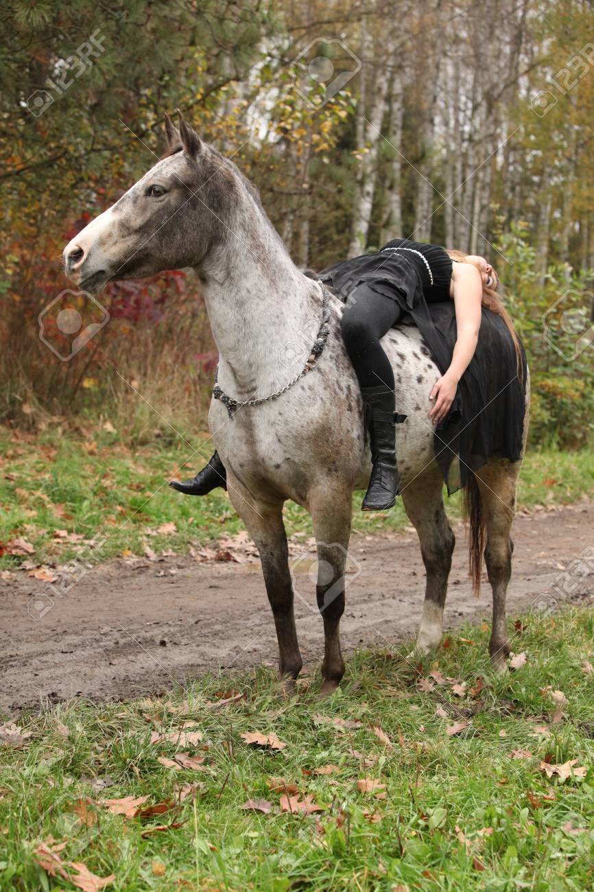young girl with appaloosa horse in autumn forest stock photo