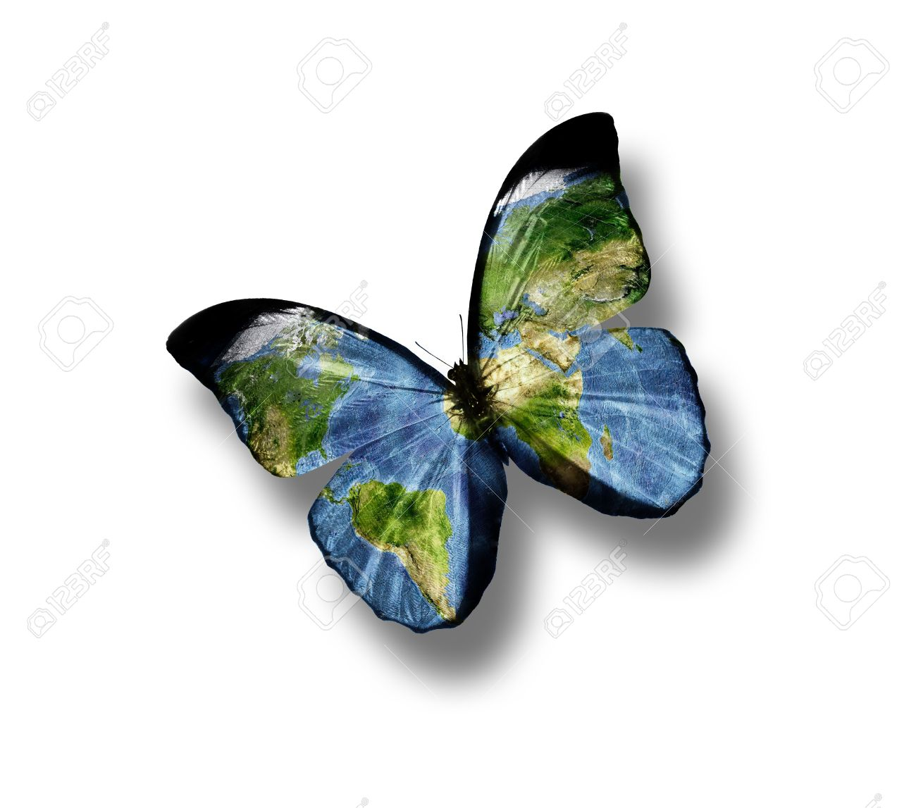 Butterfly With A World Map On The Wings Isolated On White Background