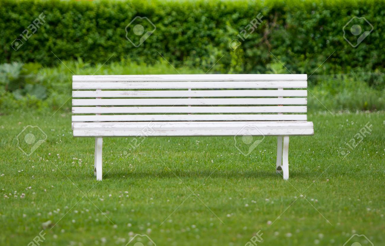 White Painted Bench In A Park Stock Photo Picture And Royalty Free