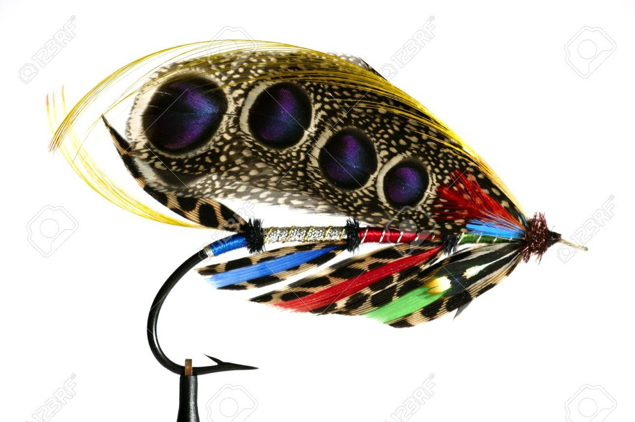 fly fishing flies / lures for salmon stock photo, picture and, Fly Fishing Bait