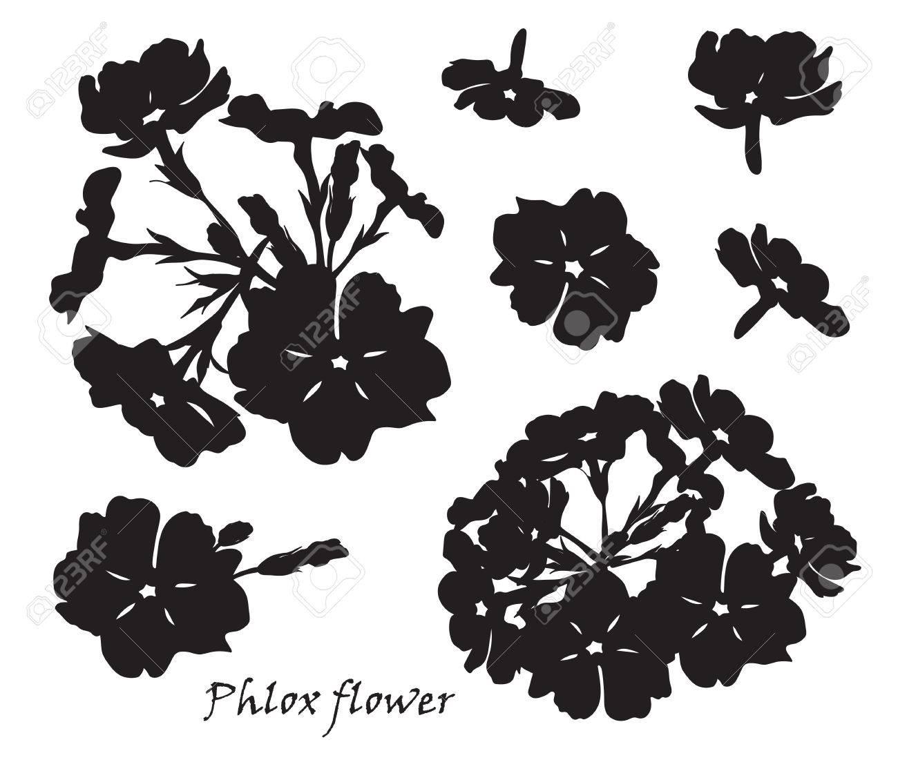 schwarze blattern