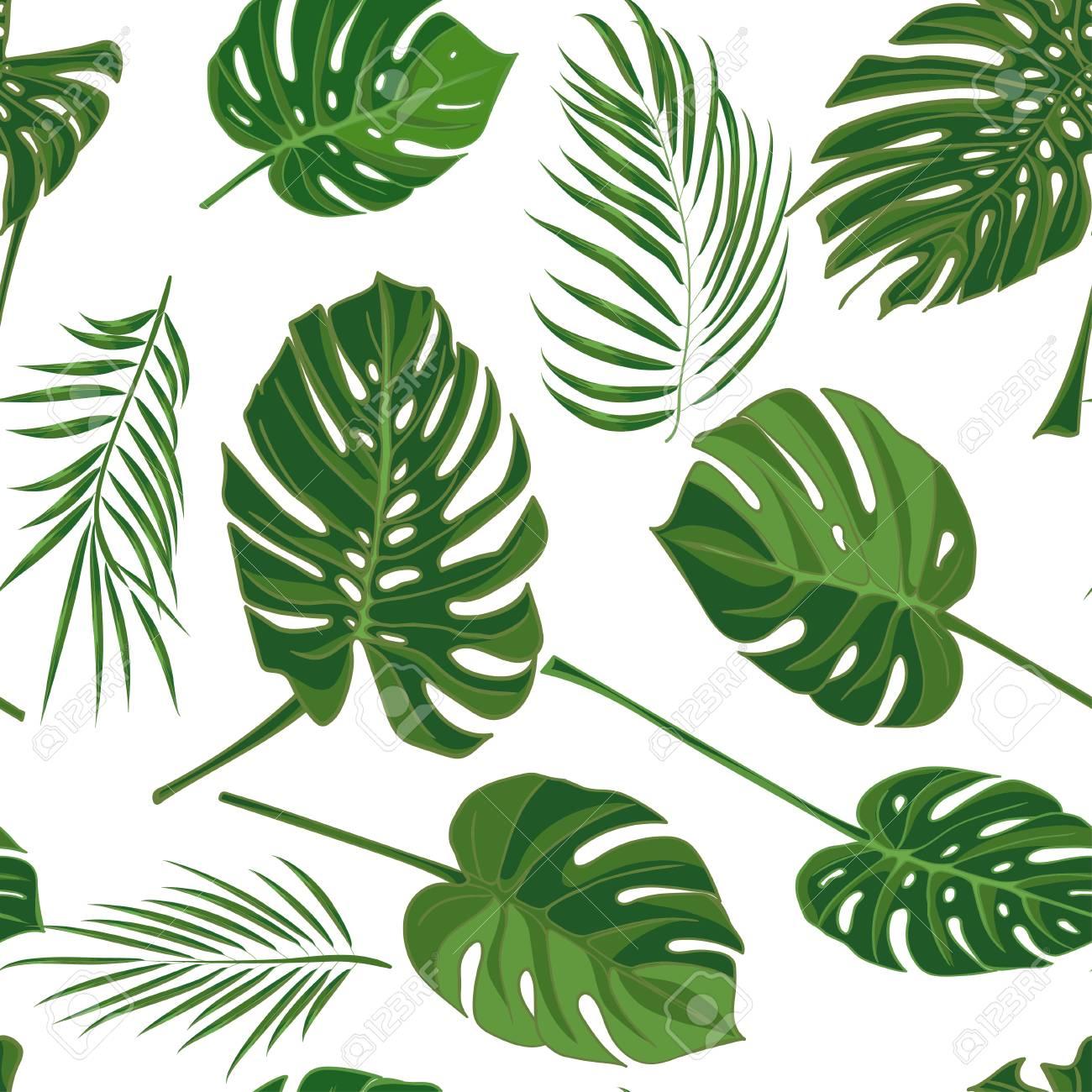 Mano Transparente Dibujado Patrón Tropical Con Hojas De Palma En ...