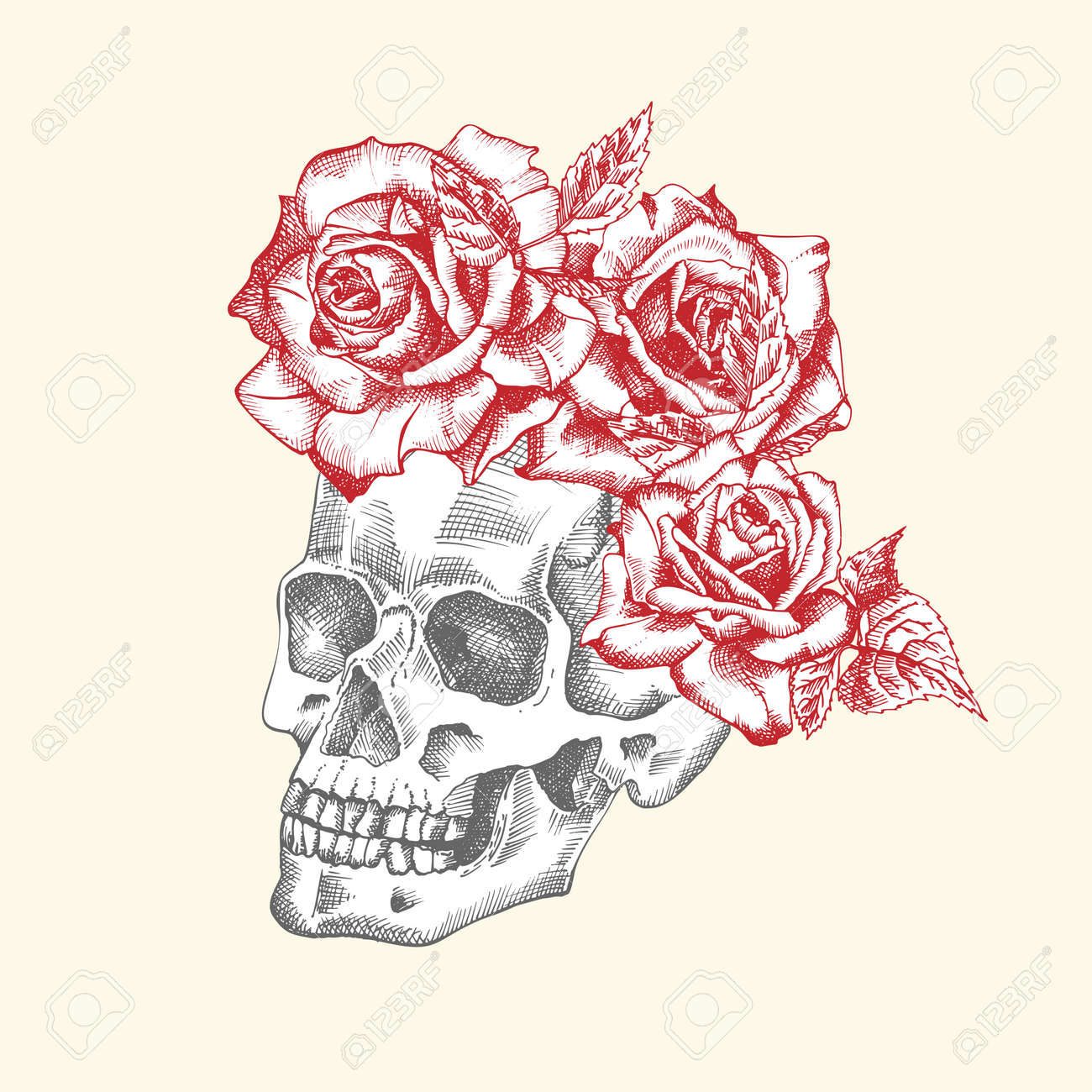 Hand drawn sketch human skull with wreath of flowers. Red roses Funny character Black graphic Engraving art isolated on white background. Vintage style. Vector - 161481828