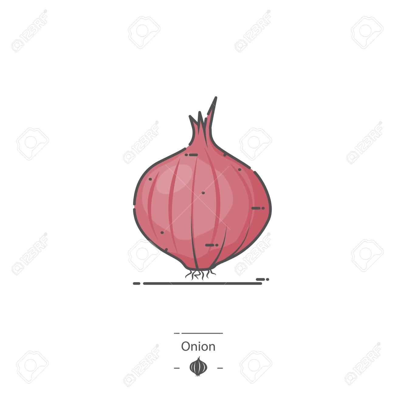 Onion - Line color icon - 126180362