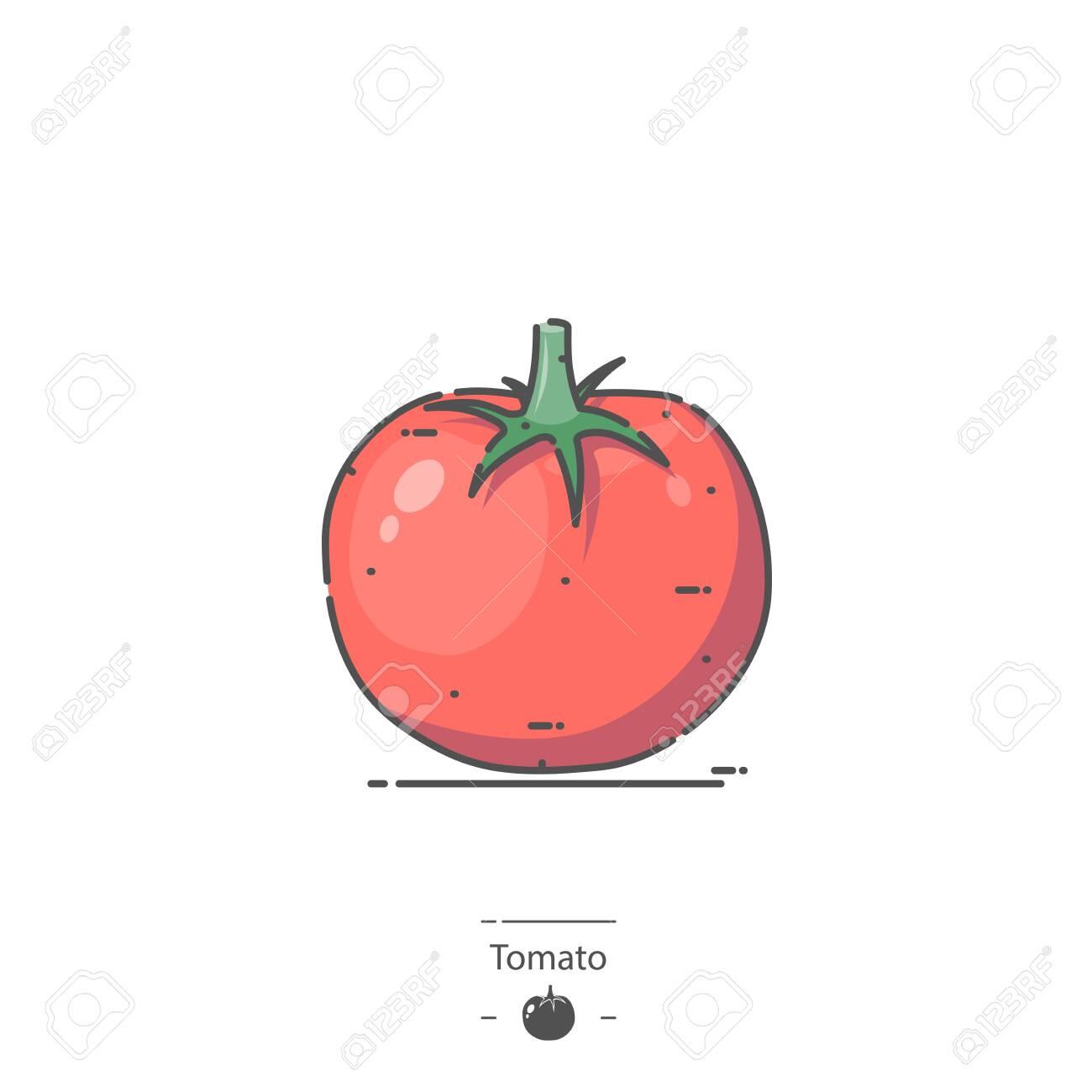 Tomato - Line color icon - 135244020
