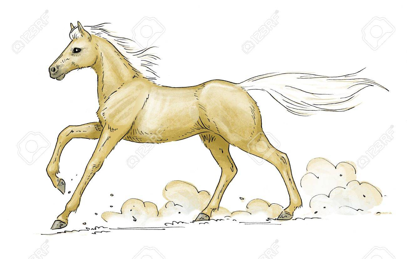 Illustration Of A Galloping Palomino Horse Stock Photo Picture And Royalty Free Image Image 19135746