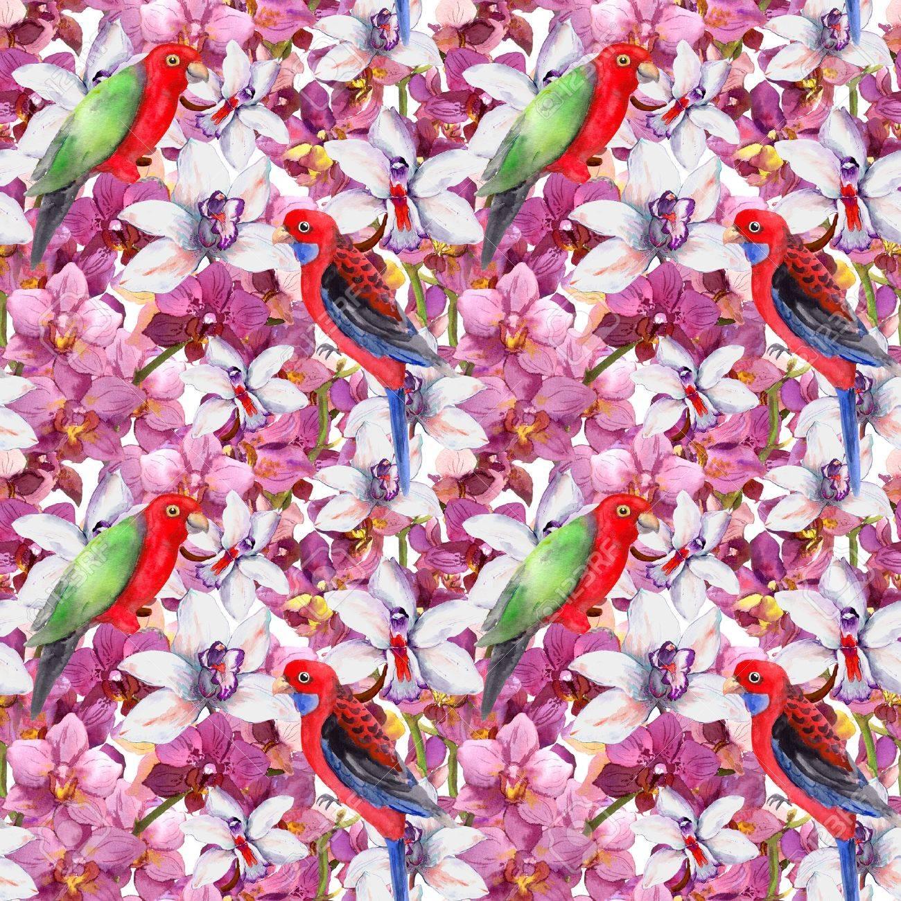Motif Extensible Floral Exotique Oiseau Perroquet Fleurs D Orchidees En Fleurs Fond D Ecran Sans Couture A L Aquarelle Banque D Images Et Photos Libres De Droits Image 45666208