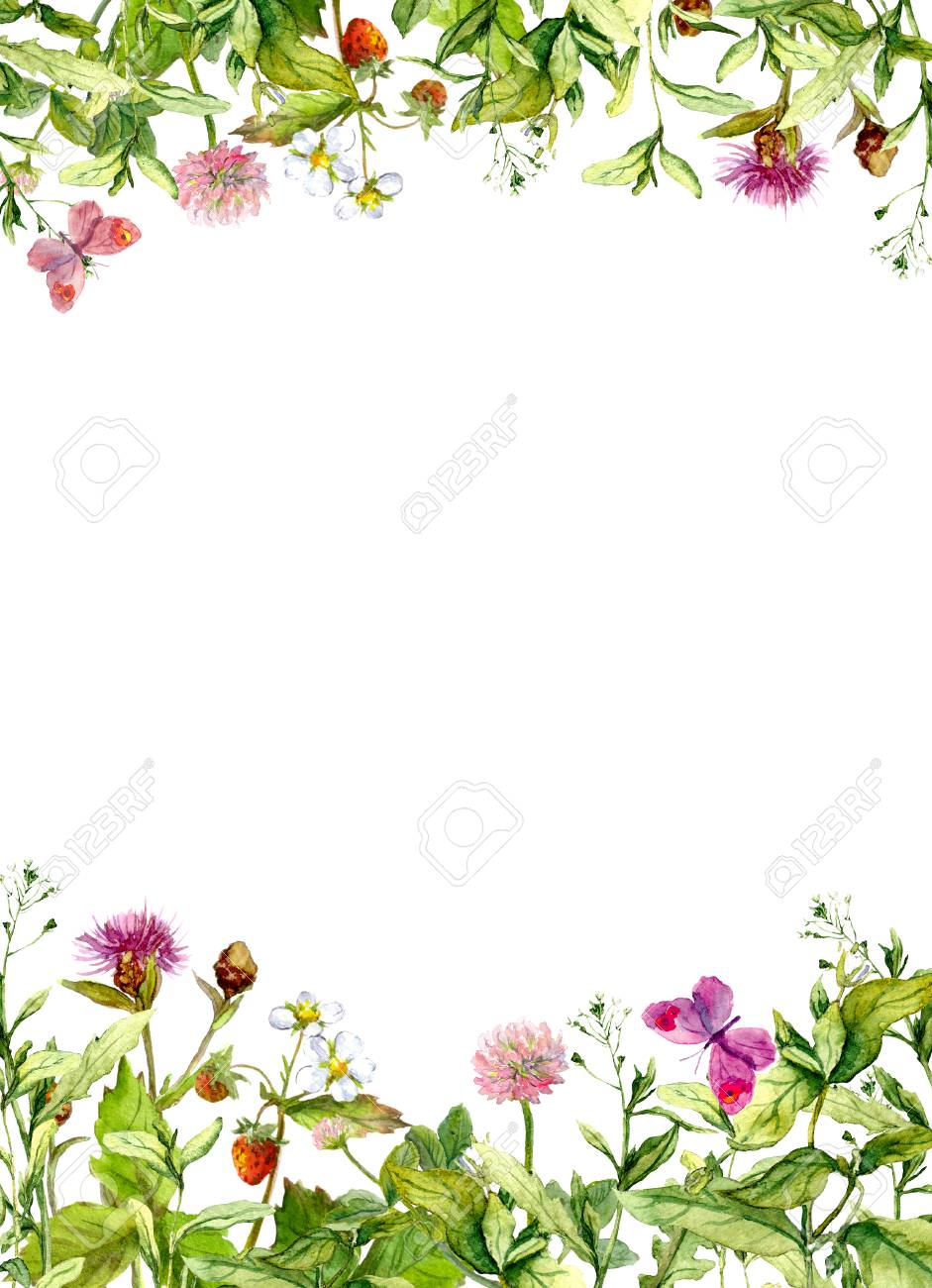 Spring Flowers Meadow Grass Butterflies Vintage Floral Border