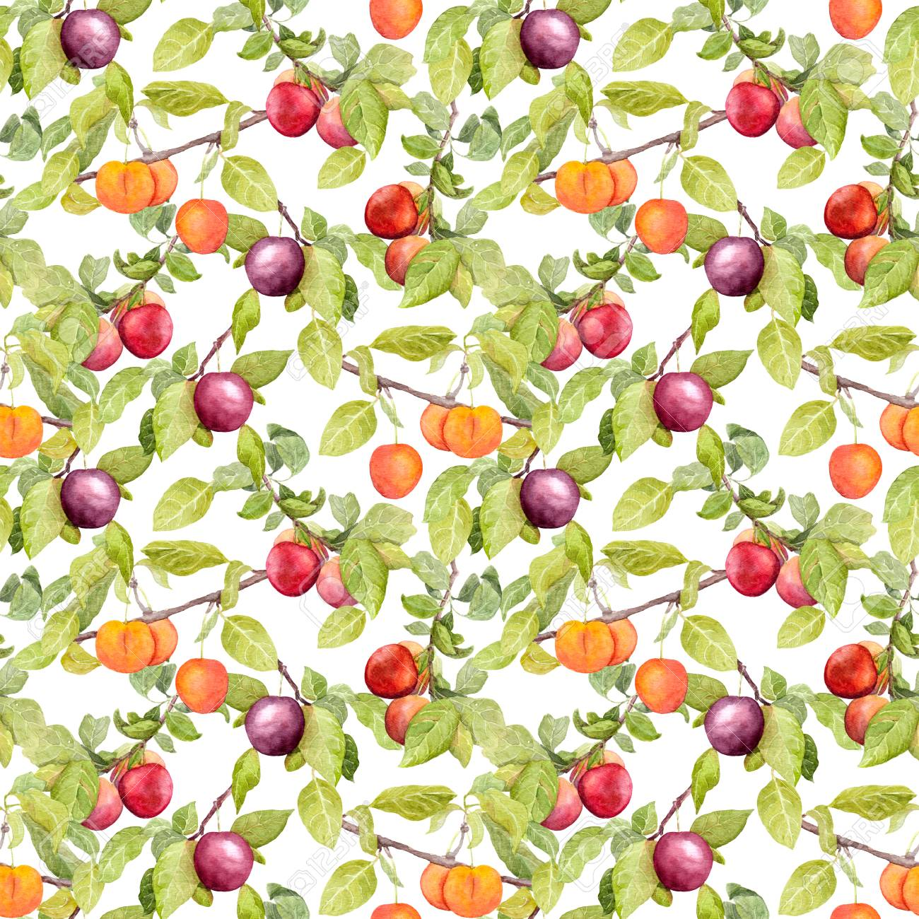 Fruits Garden With Plum Cherry Apples Seamless Wallpaper Stock Photo Picture And Royalty Free Image Image 64493923