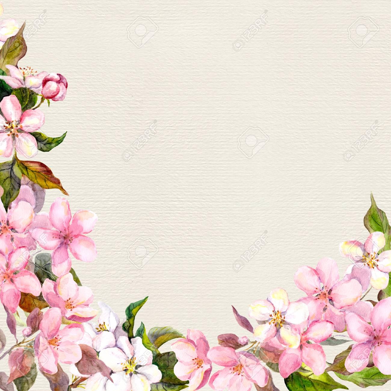 Immagini Stock Fiori Rosa Mela Fiore Di Ciliegio Cornice